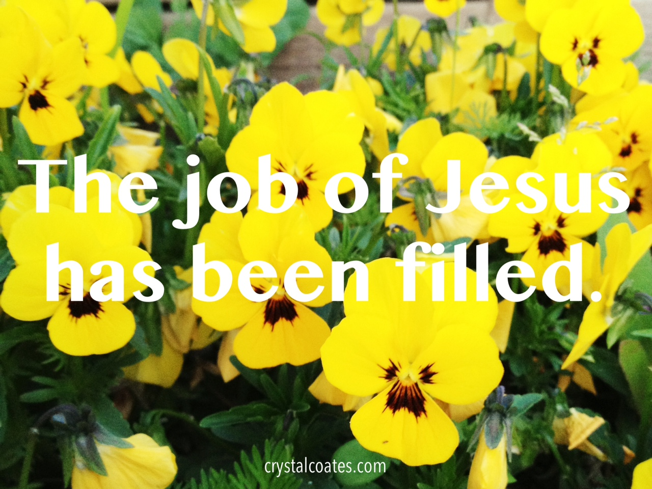 The Job of Jesus has Been Filled